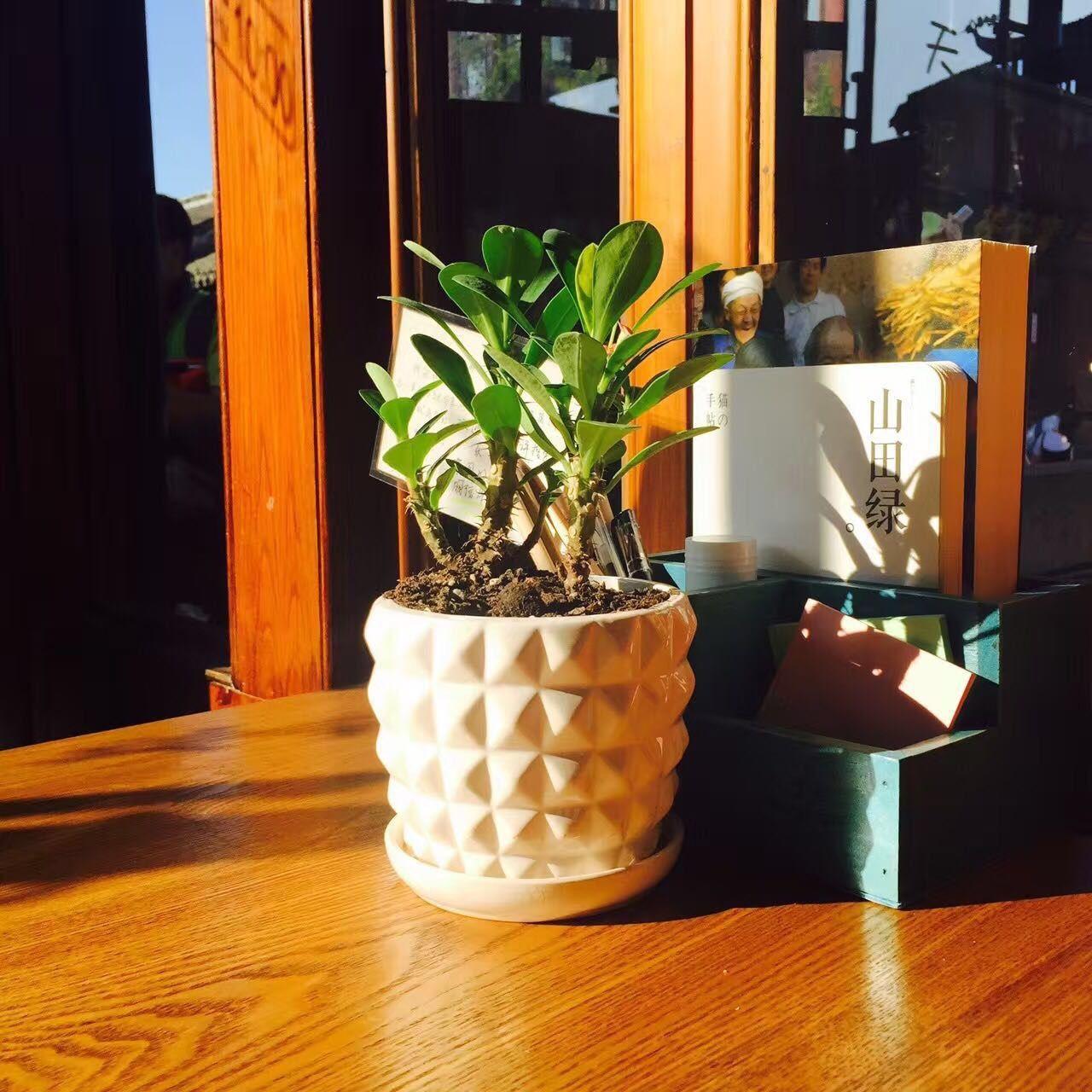 乐天主子复合咖啡馆