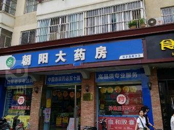 朝阳大药房(裕丰荔园店)