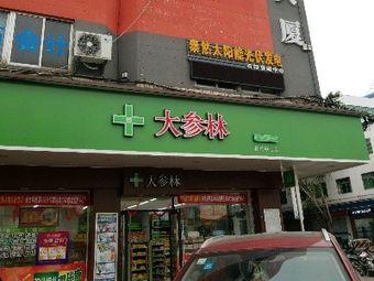 大参林(石排中心药店)