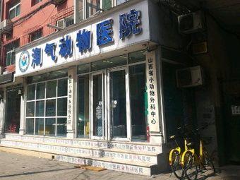 中国小动物皮肤病分院