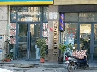 阜阳精英健康管理咨询有限公司