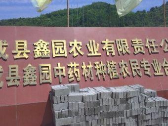 成县鑫园中药材种植专业合作社