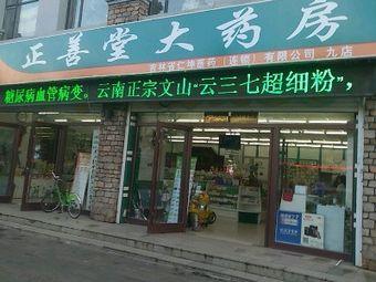 正善堂大药房(九店)