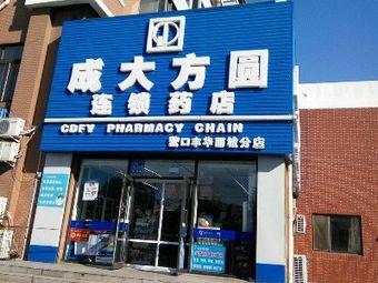 成大方圆药店城中城分店