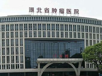 湖北省肿瘤医院(卓刀泉南路总院)