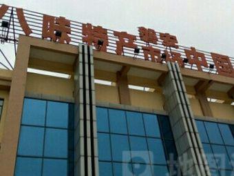 中国药材城