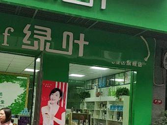 绿叶(彰泰睿城店)