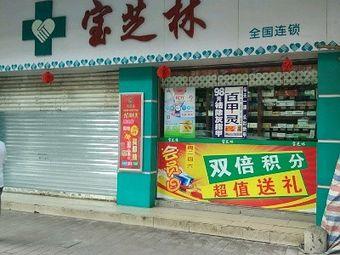 宝芝林(水南店)