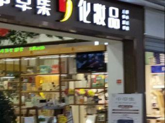 中草集化妆品(铂悦府小区店)