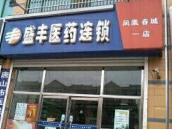盛丰医药连锁(凤凰春城一店)