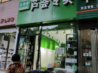 芭芭多芦荟专卖(洧水路店)