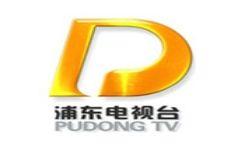 浦東電視臺