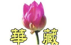 华藏卫视台标