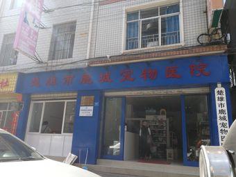 楚雄市鹿城宠物医院