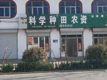 美盛科学种(赵寨子店)