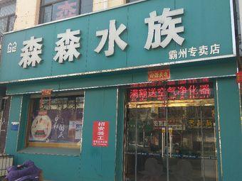 森森水族(霸州店)