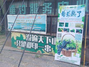 丰乐农庄-垂钓中心