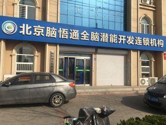 北京门萨全脑潜能开发中心