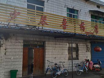 少琴兽药店
