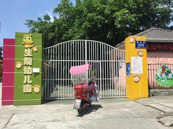 生龙幼儿园