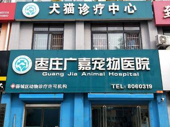 枣庄广嘉宠物医院犬猫诊疗中心