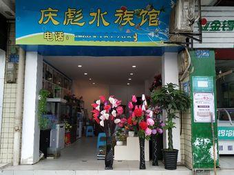 庆彪水族馆