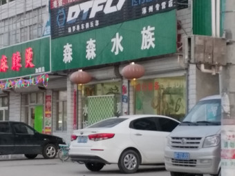 森森水族(兴东路店)