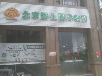 北京鹏生国际教育