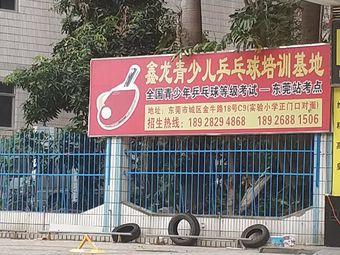 鑫龙乒乓球馆