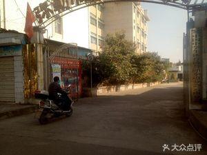 云南励志精英跆拳道教育联盟