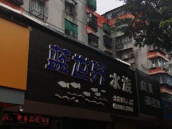 蓝世界水族馆(金环南路店)