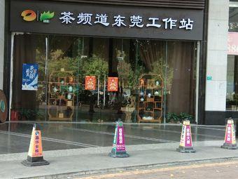 茶频道东莞工作站