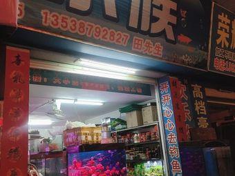 闽江水族(大石分销店)