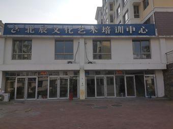 北辰文化艺术培训中心