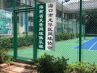 海南省天鹰网球俱乐部
