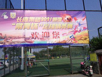 伦教滨江公园足球场