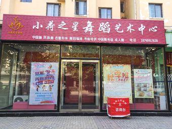 小荷之星舞蹈艺术中心