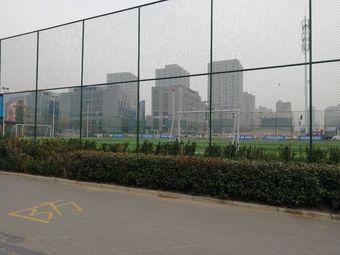 大科园足球场