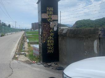 福建省农业科学院水稻研究所