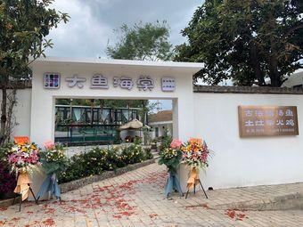 紫园大鱼海棠