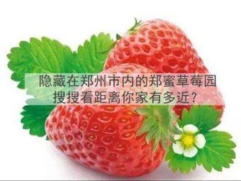 郑蜜草莓采摘基地