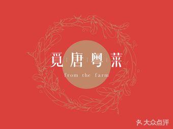觅唐粤菜fromthefarm(奥运村店)