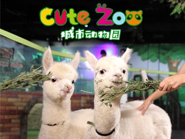 美团圈圈西安站   Cute Zoo城市动物园丨1大1小丨多种动物可互动