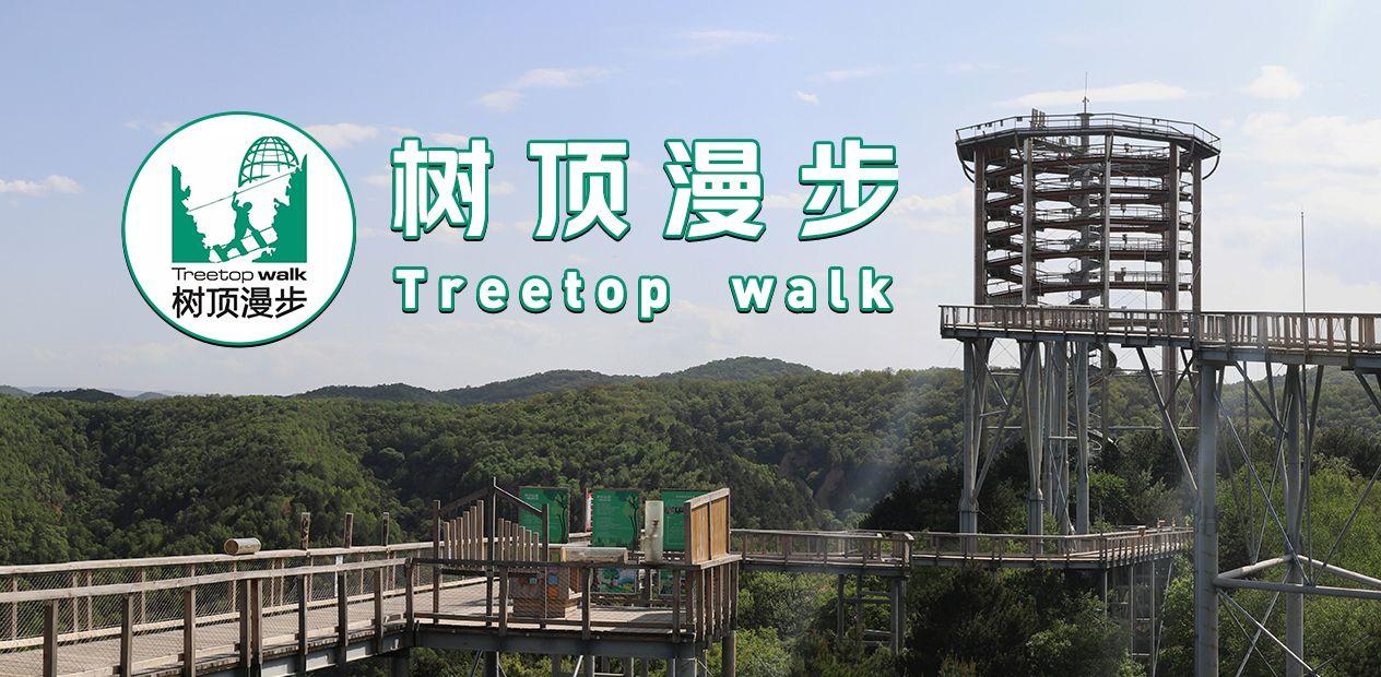 美团圈圈西安站 | 树顶漫步丨2大1小亲子票丨黄山县丨亲子避暑胜地