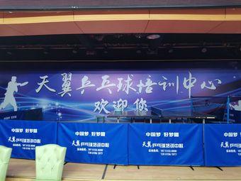 天翼乒乓球培训中心