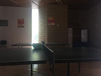 和谐乒乓球(格林小城馆)