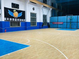 晴天体育篮球训练营