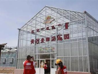 黄河麦田游乐园