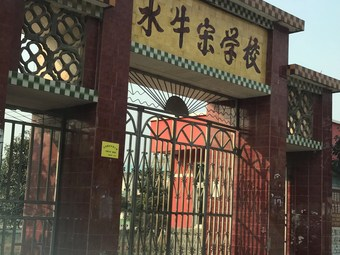 水牛宋学校