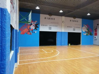 苏州新飞跃青少年篮球培训机构